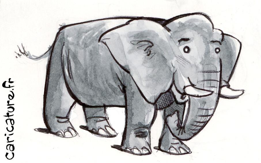 caricature d'animaux sauvage : l'éléphant