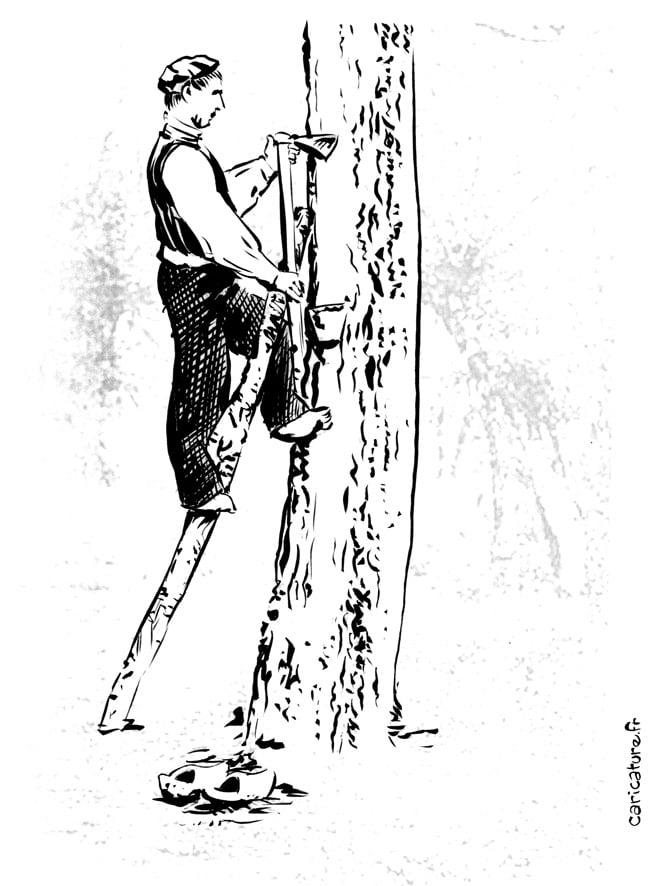Résinier Arcachon