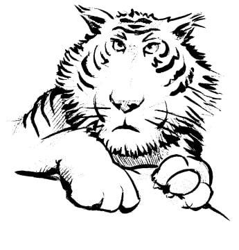 tigre coloriage