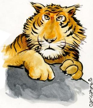 Tigre colorié
