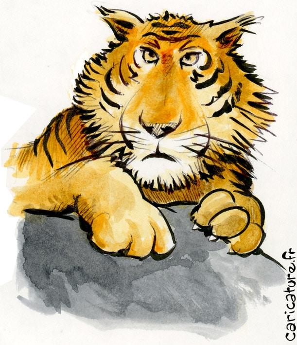 dessins d'animaux de la savane