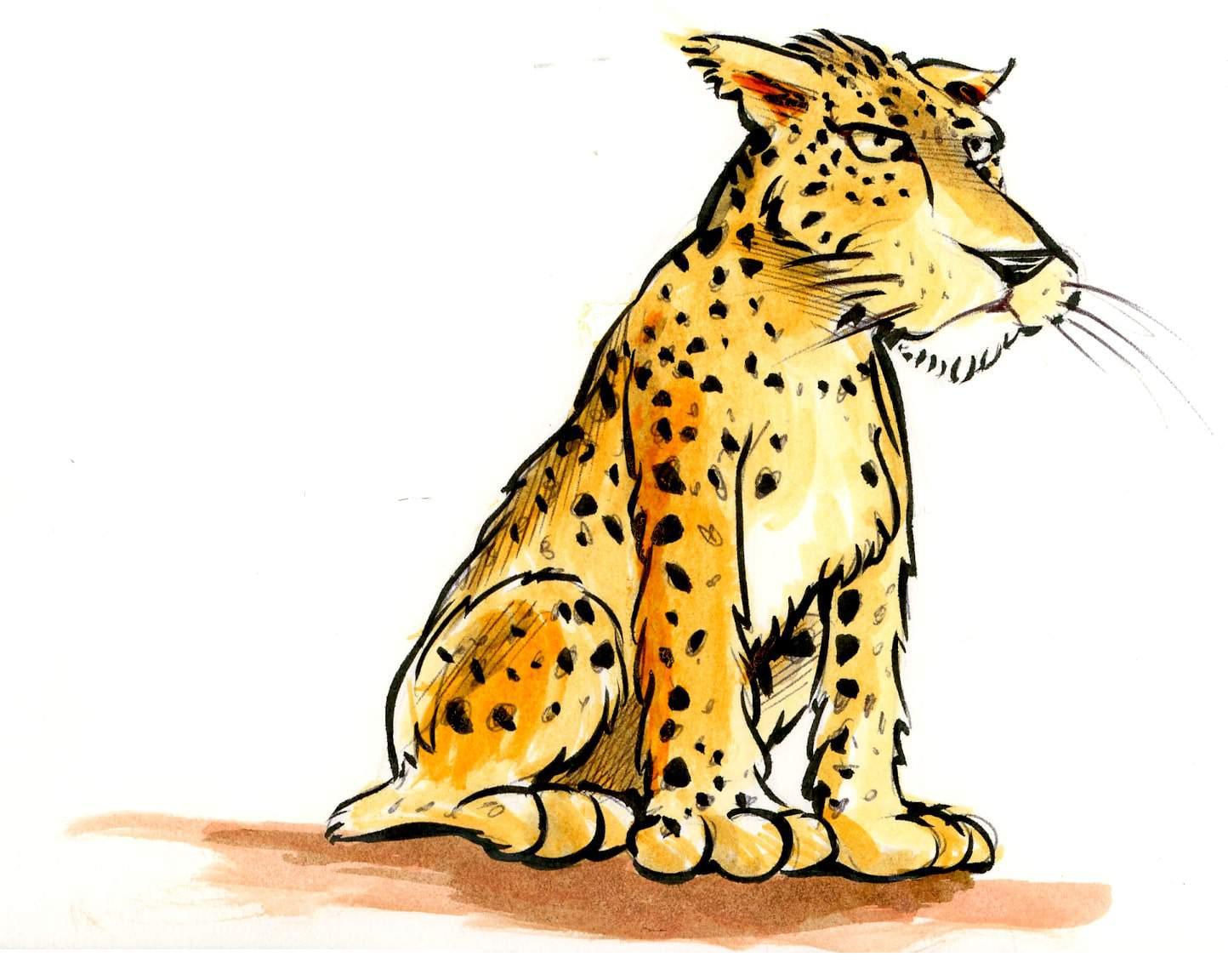 caricature d'animal sauvage : le léopard