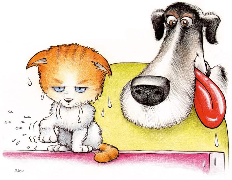 caricature d'un chien et un chat façon Bande Dessinée